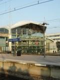 Jardin des Plantes - Nantes et retour (60)