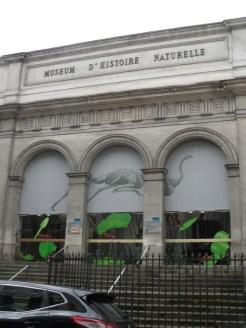 Musée d'histoire naturelle de Nantes (114)