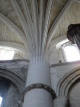 Cathédrale Saint-André et Tour Pey-Berland (31)