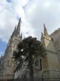 Cathédrale Saint-André et Tour Pey-Berland (48)