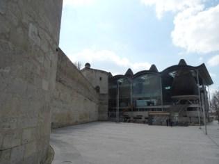 Cathédrale Saint-André et Tour Pey-Berland (50)