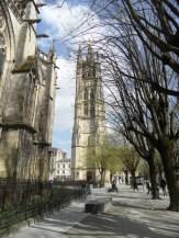Cathédrale Saint-André et Tour Pey-Berland (57)
