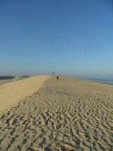 Dune de Pyla (62)