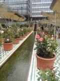 2. Jardins d'Orient (147)