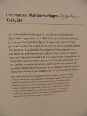 3. Paul Klee (141)