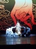 Nuit de Chine (19)