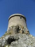 De Cap Fréhel à Fort La Latte (262)