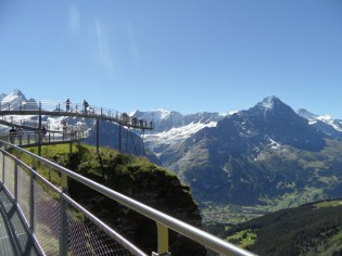 grindelwald-first-101