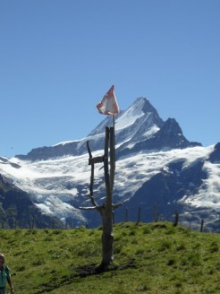 grindelwald-first-125