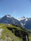 grindelwald-first-154