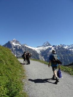 grindelwald-first-207