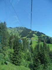 grindelwald-first-63