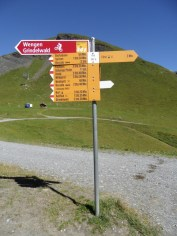 grindelwald-first-82