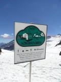jungfraujoch-top-of-europe-241