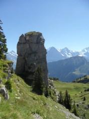 wilderswil-schynige-platte-156
