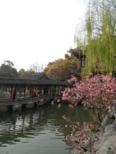 Autour de Yuyuan (149)