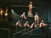 most horrifying circus accidents in history