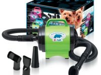 Best Dog Dryers for Sale