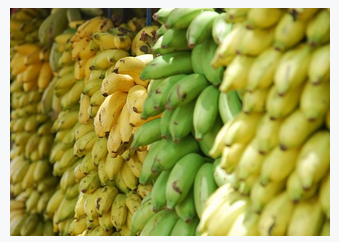 Different Types Of Banana Available In Kerala My Words Amp Thoughts