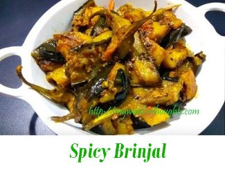 spicy brinjal