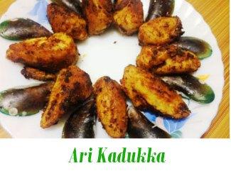 Ari Kadukka