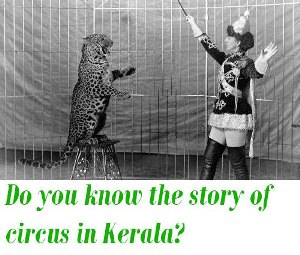 the story of circus in Kerala