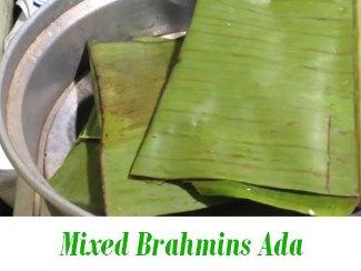 Mixed Brahmins Ada