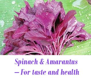 Spinach for health