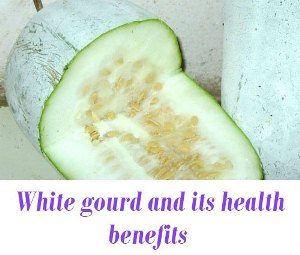 ash gourd for health