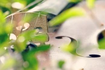 Mint violin2