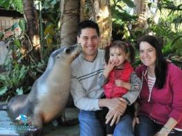 The pet porpoise pool in Coffs Harbour was a highlight of the trip, especially when we received a kiss on the cheek.