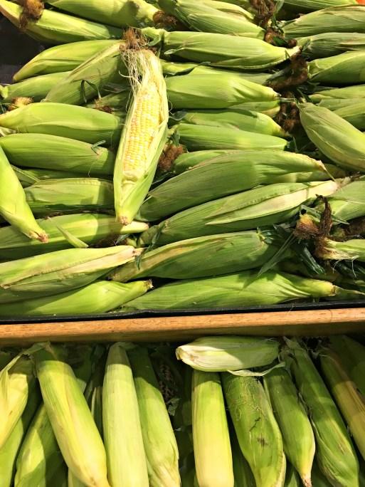 Florida corn