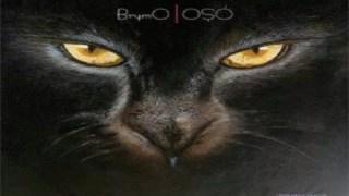 COUNTDOWN TO BUCA 2.0 - BY OGUNLEYE OLUWAKOREDE 6