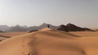EIGHTY-SIX WAYS TO CROSS ONE DESERT