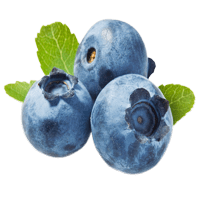 אוכמניות ארומה יין