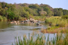 Olifants river from lodge