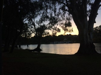 Dawn over the Murray river - trees and grass in the foreground are in dark silhouette, as is the far bank, against the rising sun