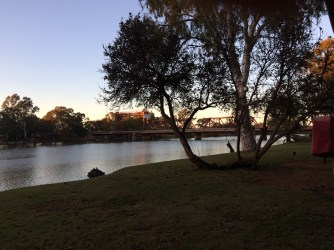 Dawn over the Murray river - grass in the foreground and trees next to the river. a bridge is visible in the background