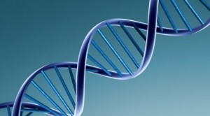 Genetics – How much do they limit you, and what can you do about it?