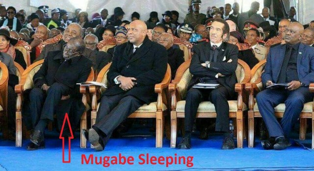 Zimbabwean President SLEEPS while others WORK - PICTURES