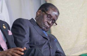 President Mugabe sleeping
