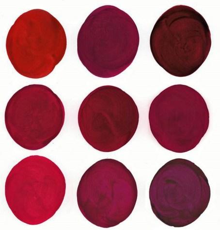 Les couleurs de la robe du vin