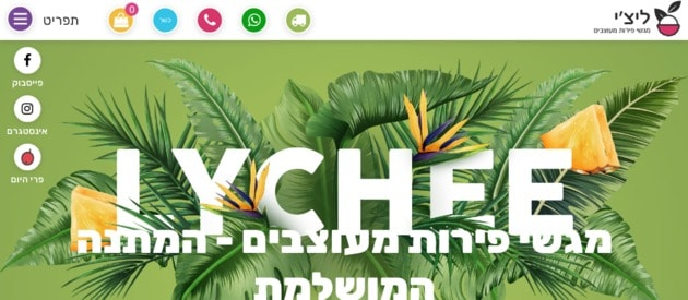 ליצ'י מגשי פירות