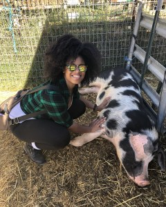 rescue-pig-belly-rubs-natural-hair