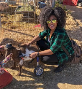 wheelchair-goat-animal-sanctuary-natural-hair