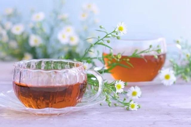 因島産杜仲茶の通販ショップを比較