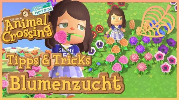 """Das Bild zeigt einen Charakter in """"Animal Crossing: New Horizons"""", welcher in einem Meer aus Blumen steht. Dort steht Tipps & Tricks Blumenzucht."""