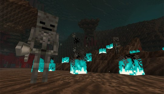 """Das Bild zeigt die Skelette in Soulsand-Valley aus dem Nether Update von """"Minecraft""""."""