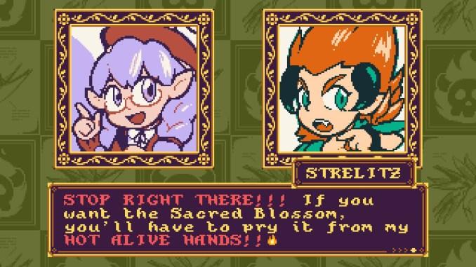 """Das Bild zeigt zwei Protagonisten aus dem Spiel """"Petal Crash""""."""