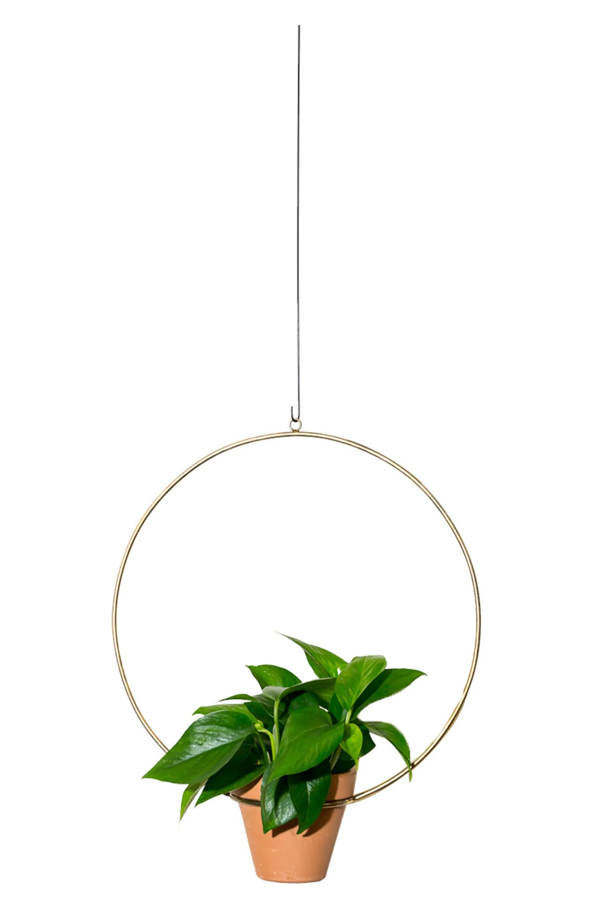 NEWMADE LA Circle Hanging Planter, Main, color, BRASS